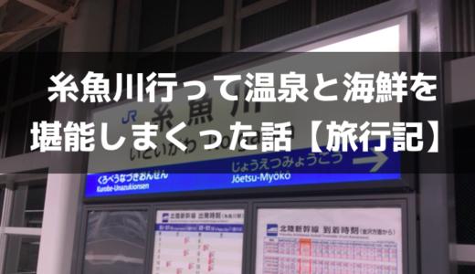 ザキオさんに会いに糸魚川(新潟)へ行ってきた話【旅行レビュー】